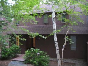 19 Pleasant Drive, Eastman, NH Rental Condo