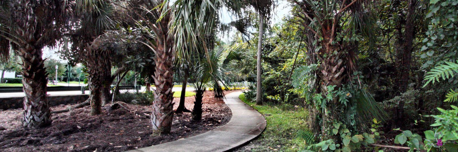 scenic trails through the neighborhood