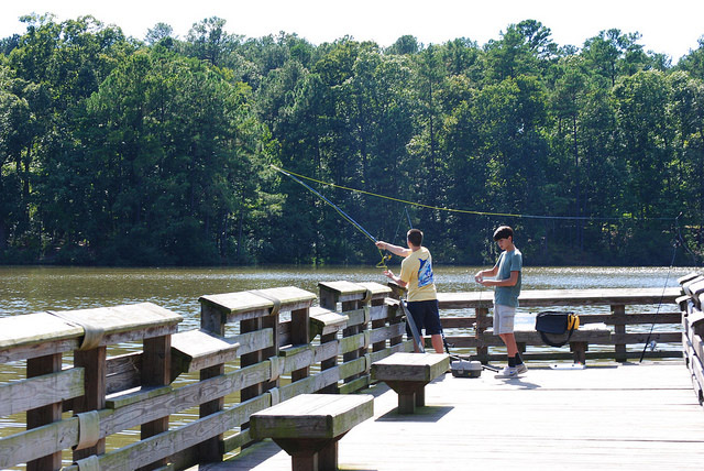fishing in apex